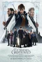 Animales fantásticos y dónde encontrarlos + Animales fantásticos: Los crímenes de Grindelwald - DVD